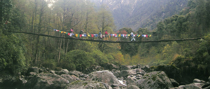 Cane bridge in Tholung